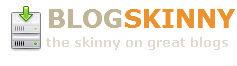Blog Skinny